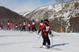 skiing 222