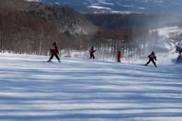 skiing 234