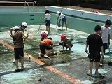 プール掃除6年 006